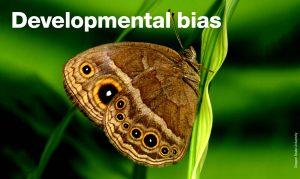 Developmental bias