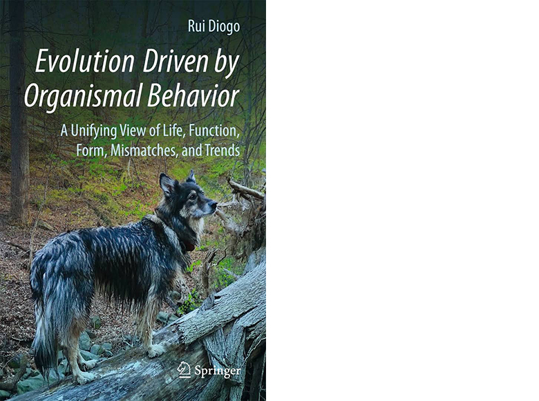 Evolution Driven by Organismal Behavior thumbnail