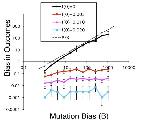mutation bias graph