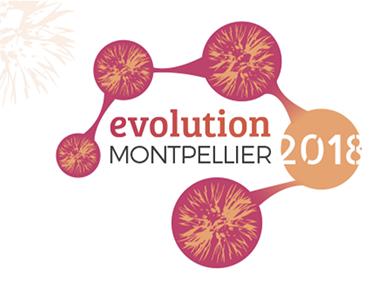 Evolution Montpellier 2018 logo