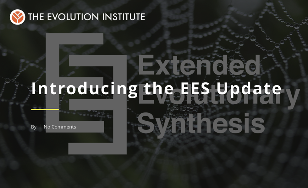 Introducing the EES Update thumbnail