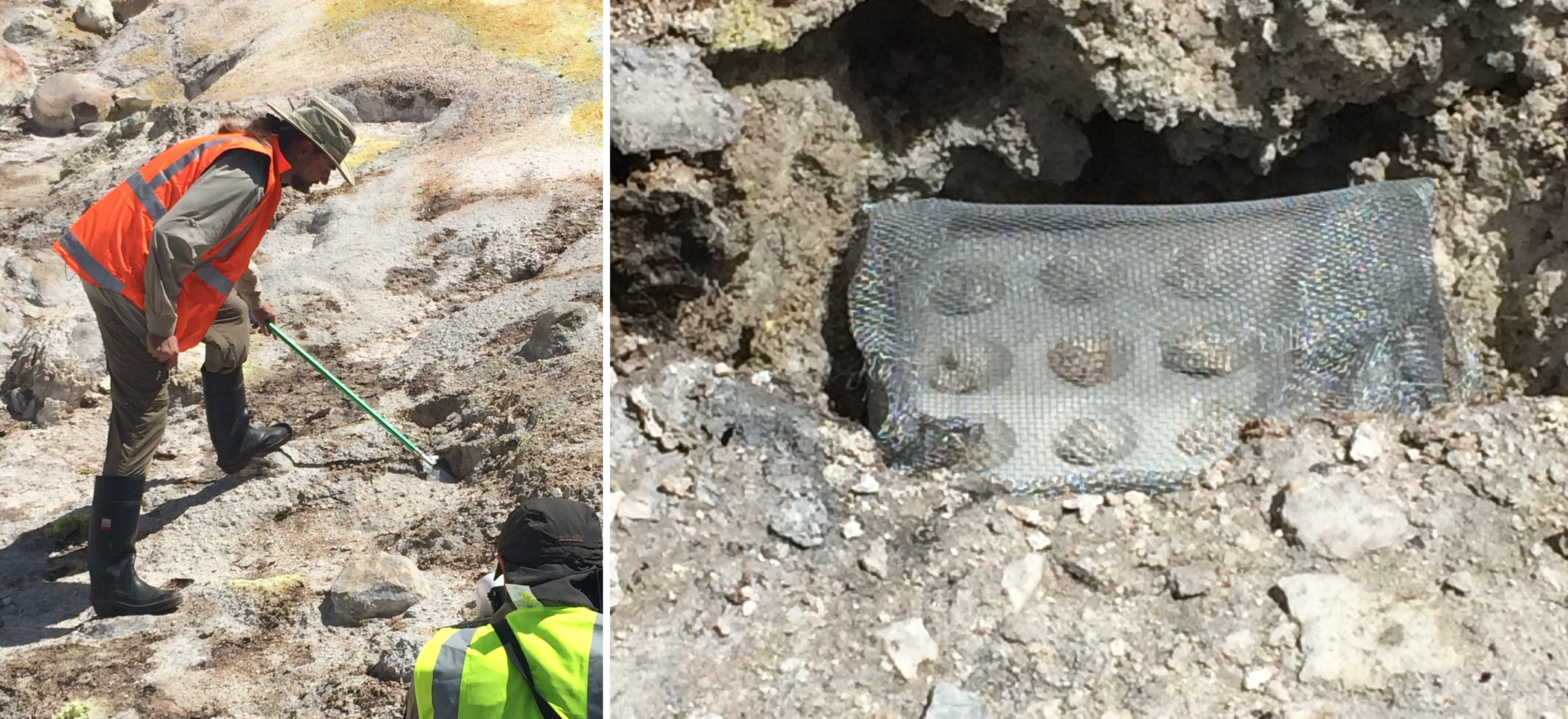 experimental samples in fumarole vents