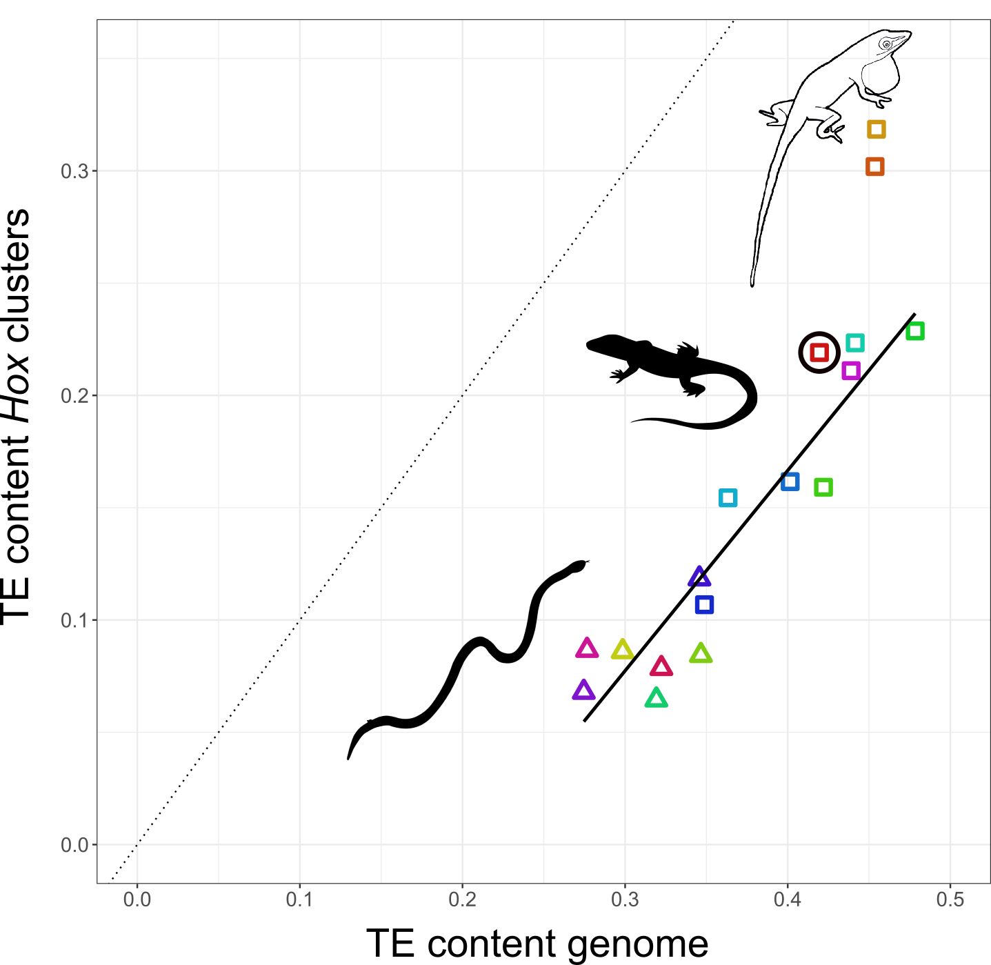 The Role of Mobile Genetic Elements in Evolution and Development thumbnail