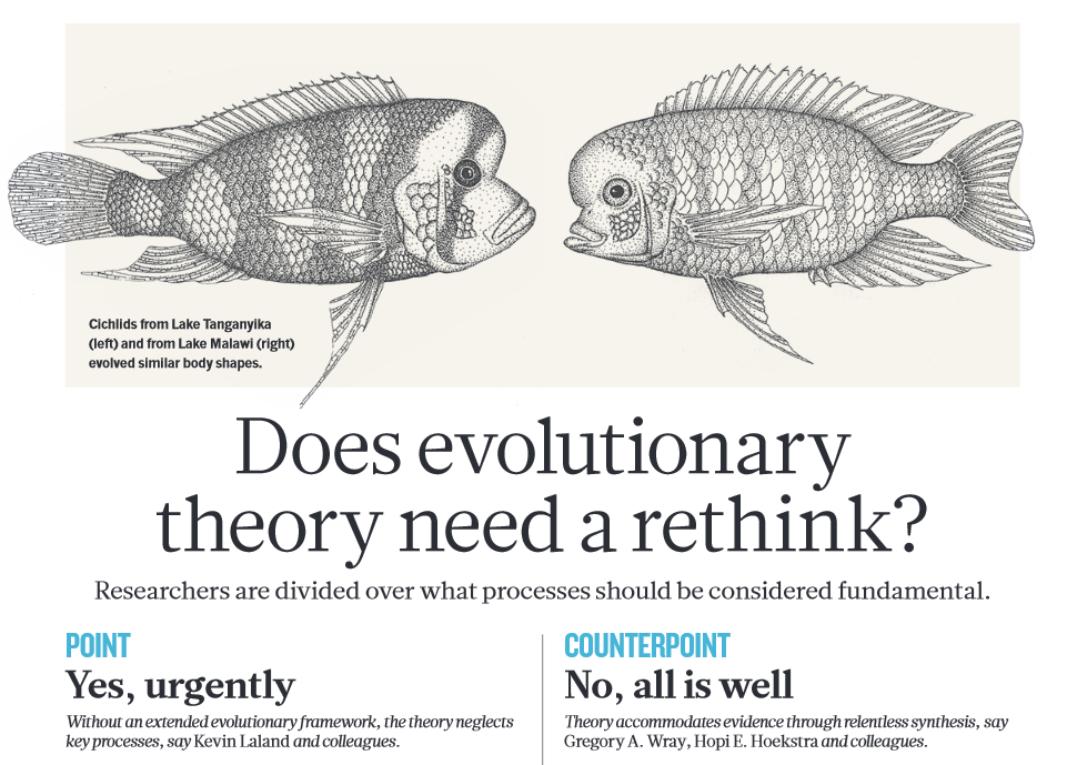 "The ""Does Evolutionary Theory Need a Rethink?"" Debate: A Backstory thumbnail"